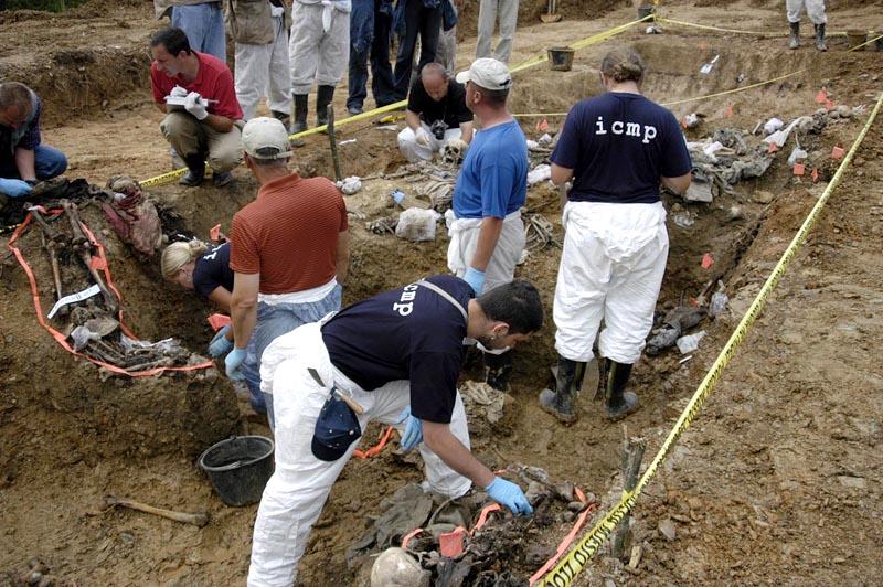 timovi_angazovani_na_ekshumacijama